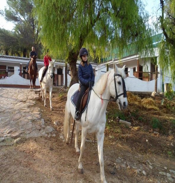 paardrijden1